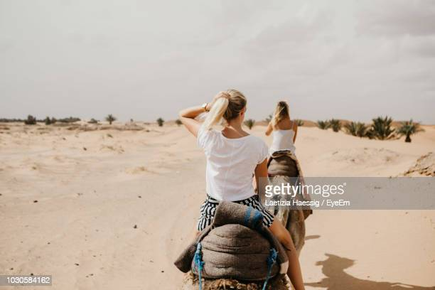 rear view of women riding camels at desert - camel stock pictures, royalty-free photos & images