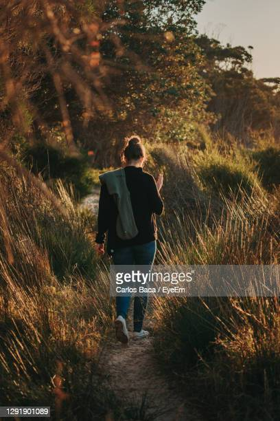 rear view of women walking on forest path amidst trees - batemans bay stock pictures, royalty-free photos & images
