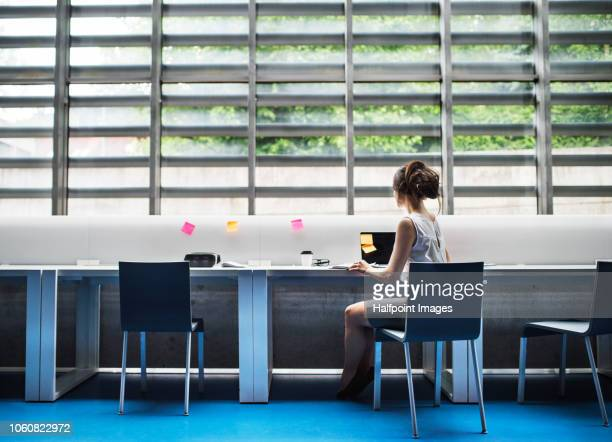 a rear view of young businesswoman working in the modern office. - wide stock pictures, royalty-free photos & images