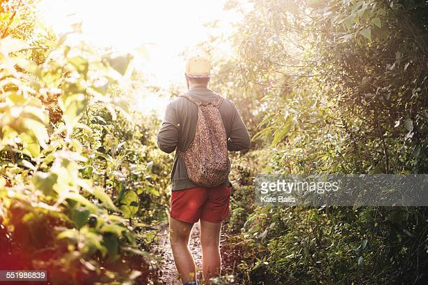 Rear view of young man hiking in rain forest at Lake Atitlan, Guatemala