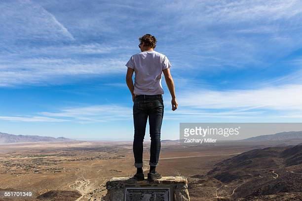 Rear view of young man looking out over landscape, Anza-Borrego Desert State Park, California, USA