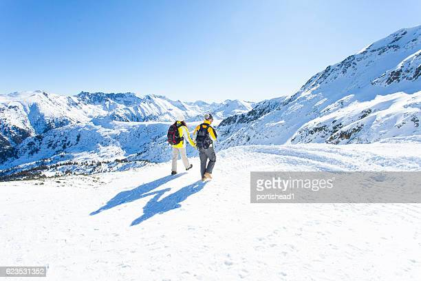 rear view of young people holding hands on top mountain - bansko foto e immagini stock