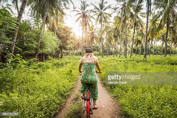 rear view of young woman cycling in palm tree forest, gili meno, lombok, indonesia - lombok fotografías e imágenes de stock