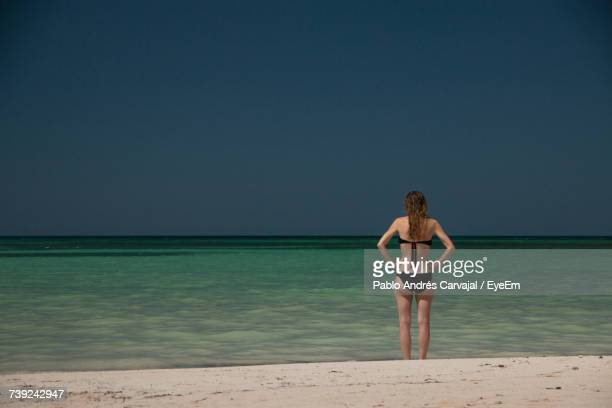 rear view of young woman standing at beach against clear sky - carvajal ストックフォトと画像