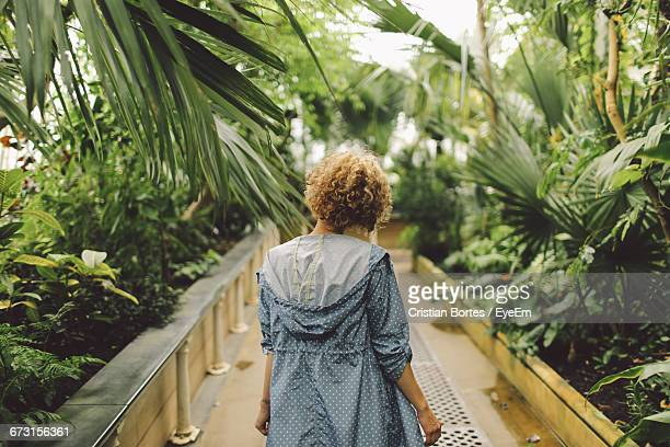 rear view of young woman standing on footpath - bortes foto e immagini stock