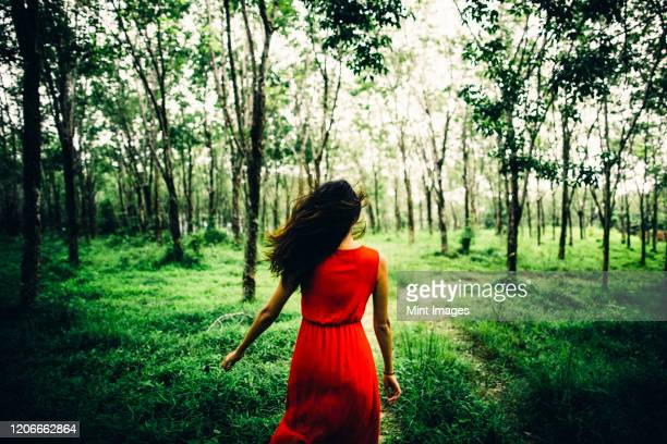 rear view of young woman wearing red dress running in a forest. - red dress stock pictures, royalty-free photos & images