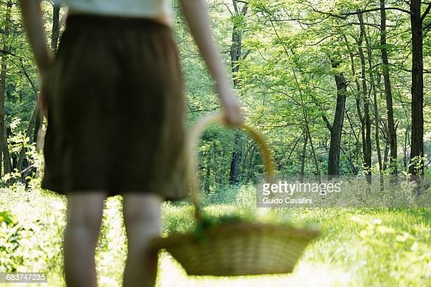 rear view of young woman with basket of foraged wild herbs in forest, vogogna, verbania, piemonte, italy - foerageren stockfoto's en -beelden