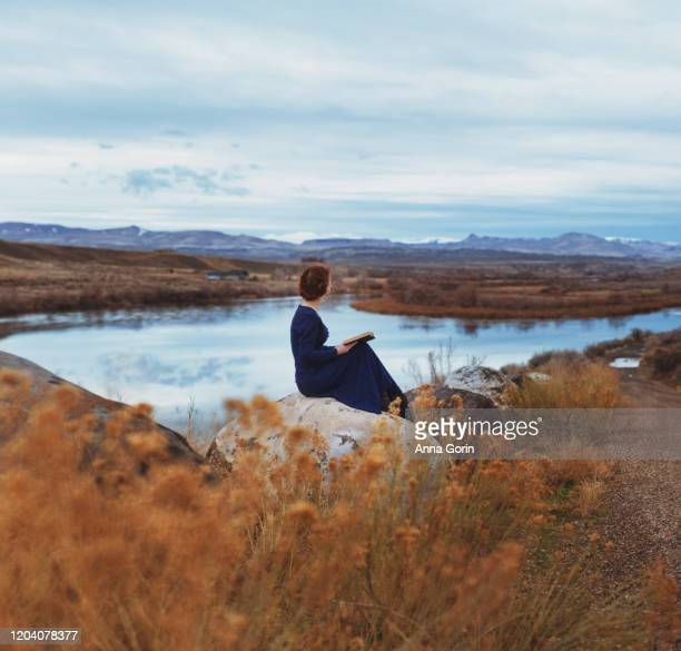 rear view of young woman with braided red hair wearing long-sleeved vintage blue dress sitting on rock reading book by river, toned image with textured effect - vestito lungo foto e immagini stock