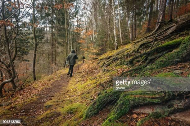 Rückansicht auf Mädchen zu Fuß in den Wald im winter