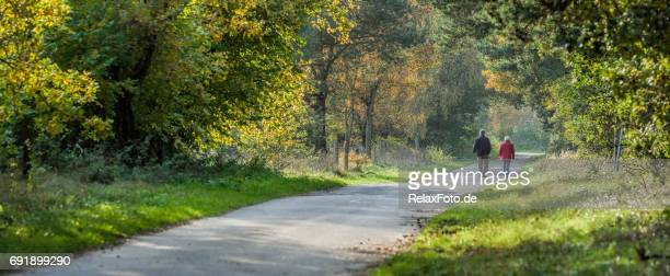 rear view on senior couple walking in autumn on footpath through forest - vanishing point stock pictures, royalty-free photos & images