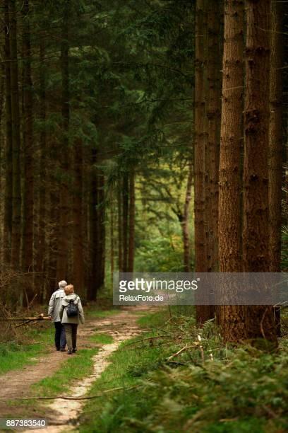 Achteraanzicht op Senior paar wandelen in het bos in de herfst
