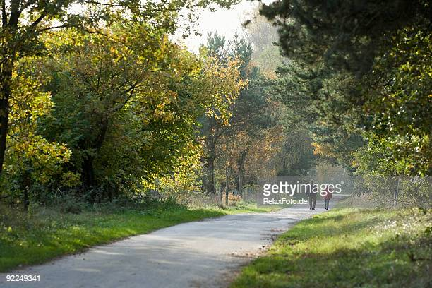 rear view on senior couple walking in forest - vanishing point stock pictures, royalty-free photos & images