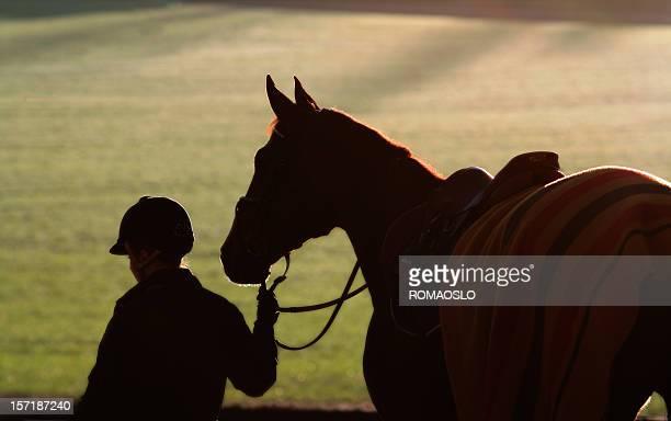 シルエットの女性と彼女の馬の夕暮れ