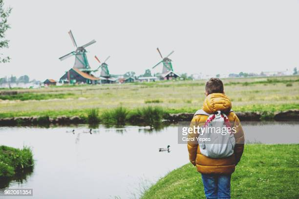rear view tourist boy looking to windmills in Zaanse Schans, The Netherlands