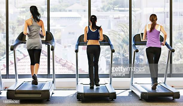 Rearview de tres mujeres jóvenes runnng en las máquinas trotadoras del gimnasio