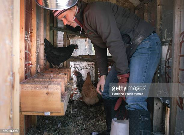 Rebecca Nelson tends to her chickens in Scarborough, ME on Tuesday, December 2, 2014. Nelson was officially diagnosed with Lyme disease more than a...