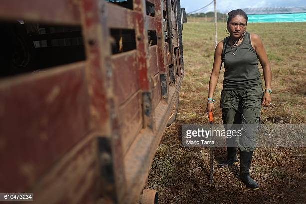 rebel Gina carries a machete after wood was delivered following the 10th Guerrilla Conference in the remote Yari plains where the peace accord was...