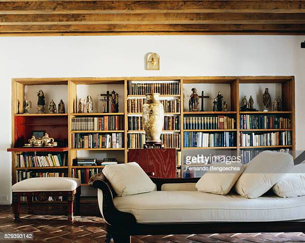 Recamier in Front of Wooden Bookcase