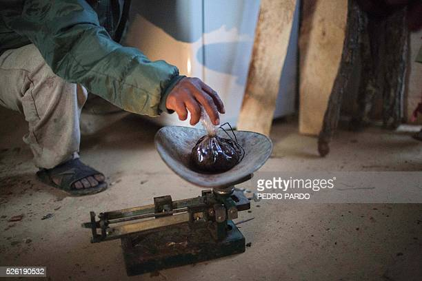 Recent picture of a man as he weighs opium gum extracted from its poppy field in Guerrero State Mexico Mexico is being whipped by drug cartels war...