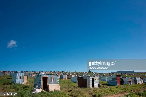 Recently built shacks on a piece of land belonging to the Louiesenhof Wine Estate are pictured on August 08 in Stellenbosch which is at the centre of...