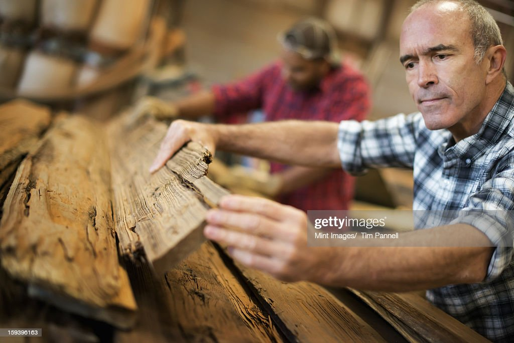 A reclaimed lumber workshop. A group of people working. A man measuring and checking planks of wood for re-use and recycling. : Stock Photo