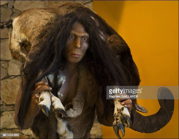 Reconstitution du visage d'Homo Erectus au musee de la prehistoire le 18 juillet 2013 Tautavel France