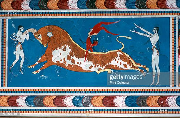 Reconstruction of the 'Bullleaping' fresco from the Minoan Royal palace at Knossos Bullleaping was believed to have a ritual purpose