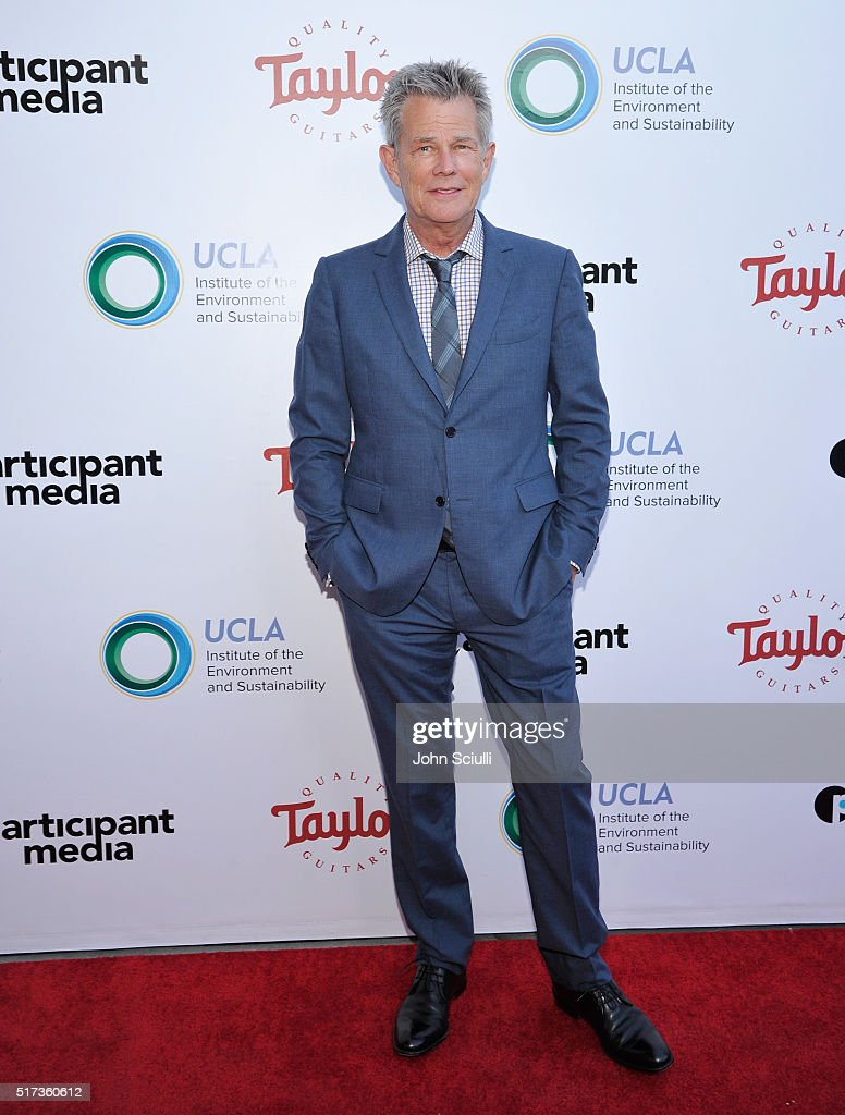 Record producer David Foster attends UCLA Institute of the Environment and Sustainability annual Gala on March 24, 2016 in Beverly Hills, California.