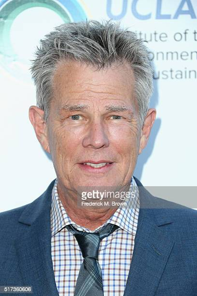 Record producer David Foster attends UCLA IOES celebration of the Champions of our Planet's Future on March 24 2016 in Beverly Hills California