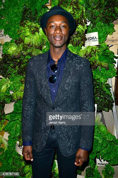 Recording artist Aloe Blacc attends the 'Can You Dig This' after party during the 2015 Los Angeles Film Festival at The Conga Room at LA Live on June...