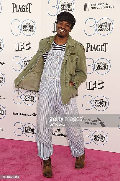 Recording artist Andre 3000 attends the 2015 Film Independent Spirit Awards on February 21 2015 in Santa Monica California