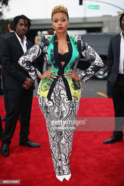 Recording artist Chrisette Michele attends the 56th GRAMMY Awards at Staples Center on January 26 2014 in Los Angeles California