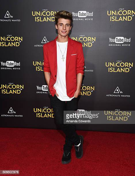 Recording artist Christian Collins arrives at the premiere of 'A Trip To Unicorn Island' at TCL Chinese Theatre on February 10 2016 in Hollywood...