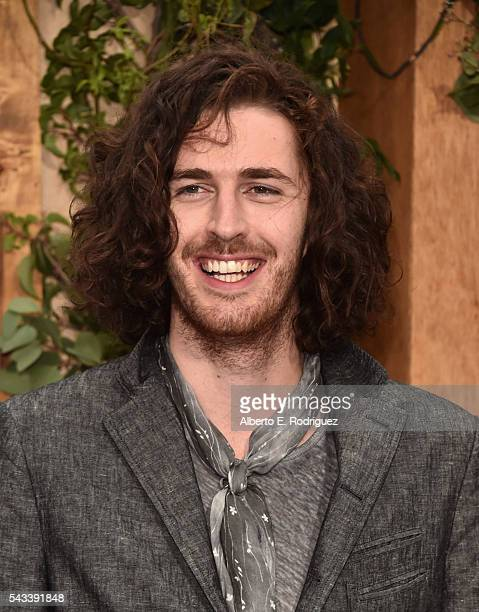Recording artist Hozier attends the premiere of Warner Bros Pictures' The Legend of Tarzan at Dolby Theatre on June 27 2016 in Hollywood California