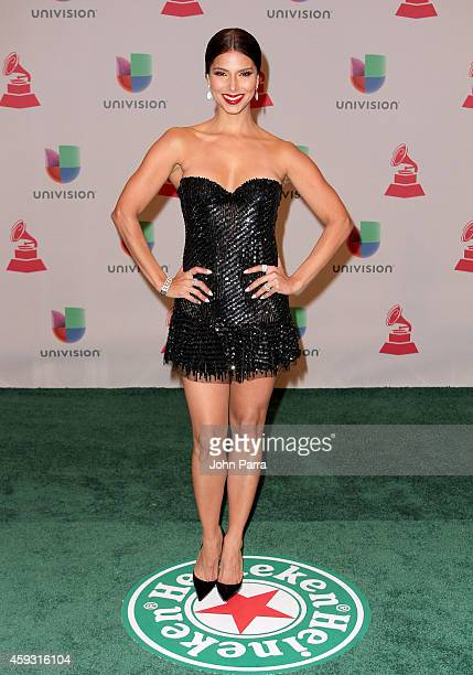 Recording artist Roselyn Sanchez attends the 15th annual Latin GRAMMY Awards at the MGM Grand Garden Arena on November 20 2014 in Las Vegas Nevada