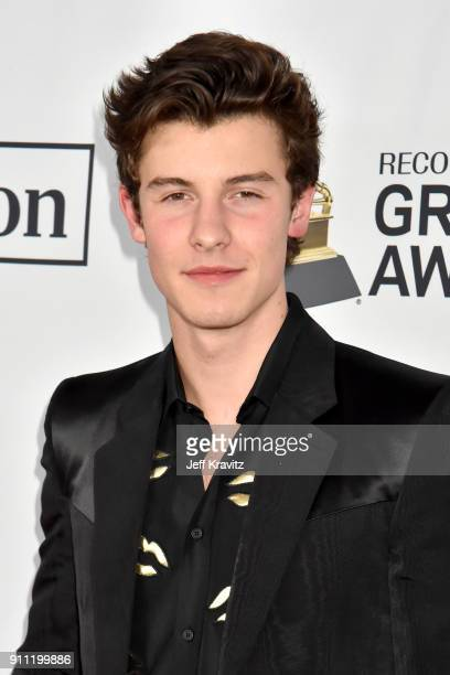 Recording artist Shawn Mendes attends the Clive Davis and Recording Academy PreGRAMMY Gala and GRAMMY Salute to Industry Icons Honoring JayZ on...