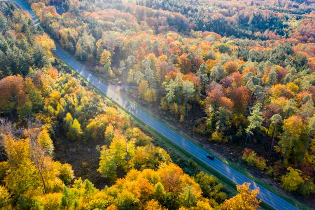 UAV recording, autumn in the Rems valley, mixed forest, Baden-Wuerttemberg, Germany