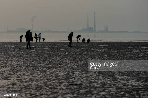 Recreational razor clam pickers seen at low tide near Dun Laoghaire West Pier, during level 5 COVID-19 lockdown. On Tuesday, March 30 in Dublin,...