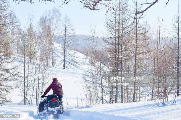 recreational snowmobile ride in woods - cliqueimages stock pictures, royalty-free photos & images