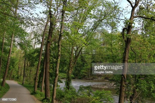 recreational trail along the cuyahoga river, cuyahoga valley national park, akron, ohio, usa - cuyahoga river stock photos and pictures