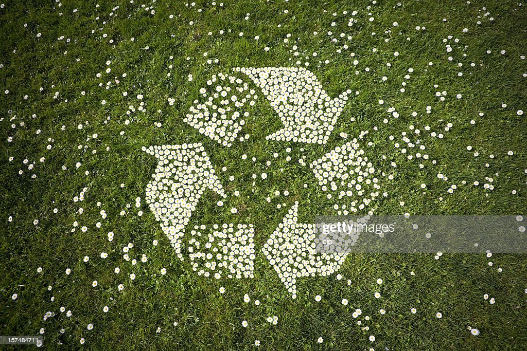 Recycle Logo in Daisies on Grass : Stock Photo