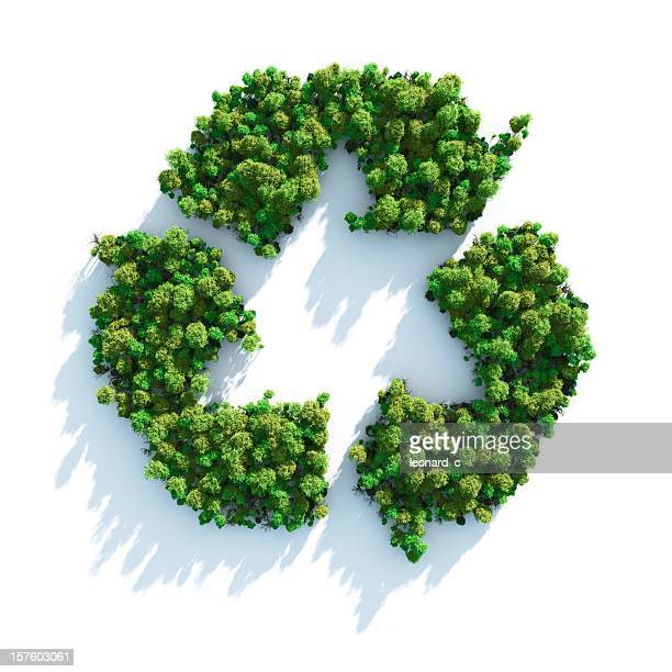 recycle sign made of green trees - decline stock pictures, royalty-free photos & images