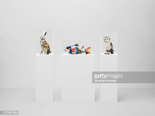 recycled plastic animals - animal representation stock pictures, royalty-free photos & images