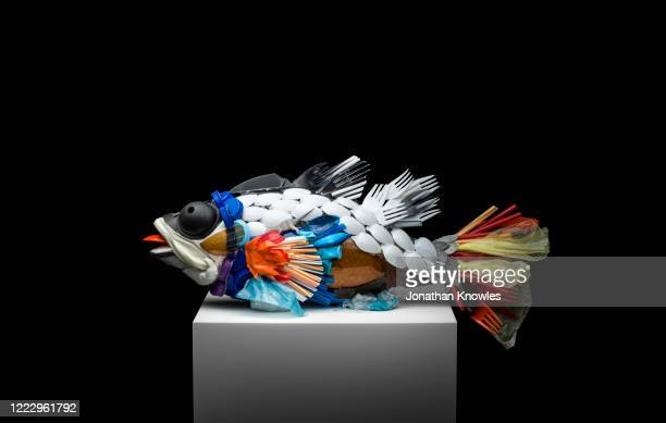 recycled plastic fish sculpture - animal representation stock pictures, royalty-free photos & images