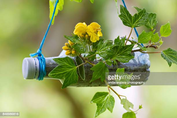 Recycling gardening