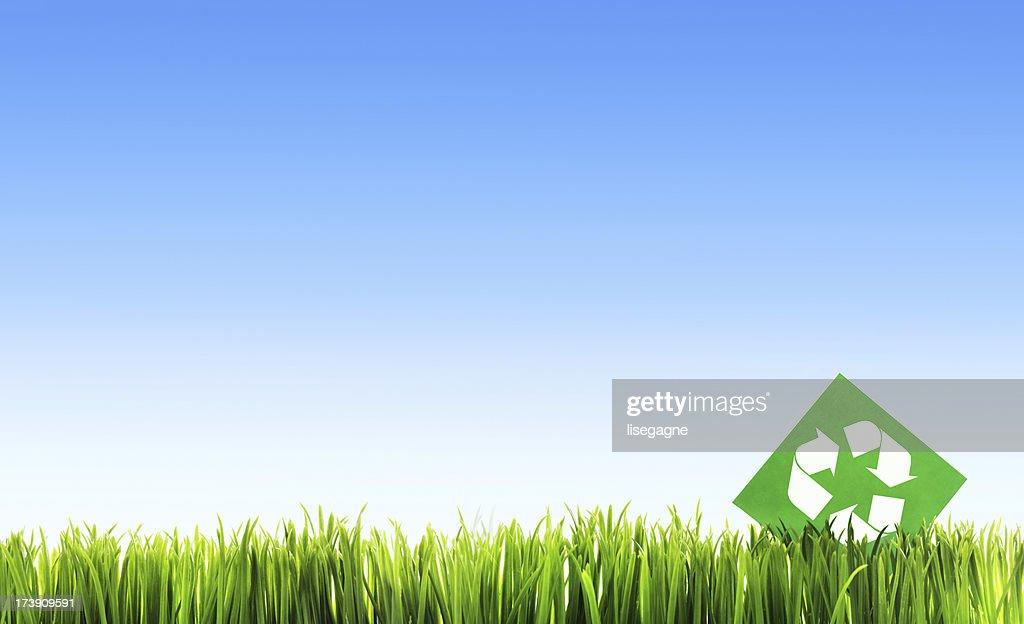 Recycling symbol : Stock Photo