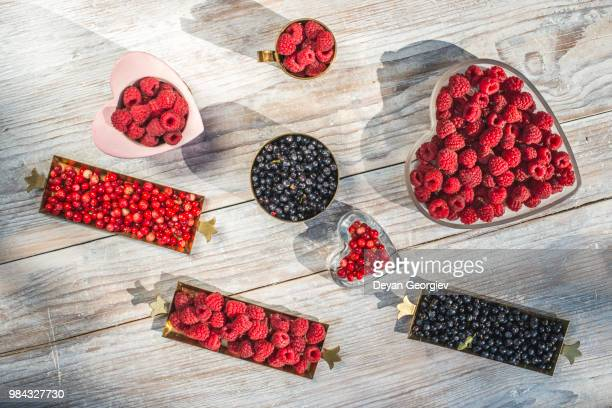 Red and black raspberry and blueberry