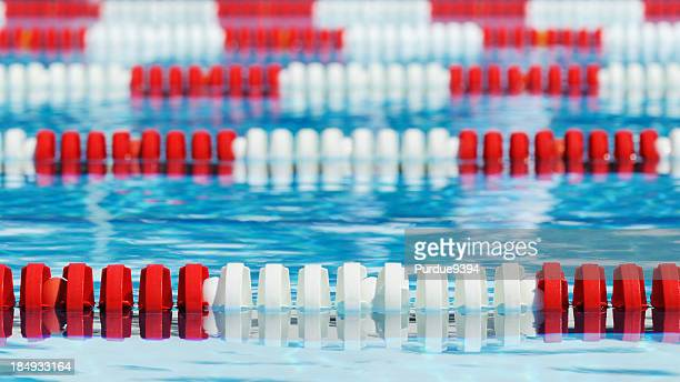 red and white swimming pool lane markers - length stock photos and pictures