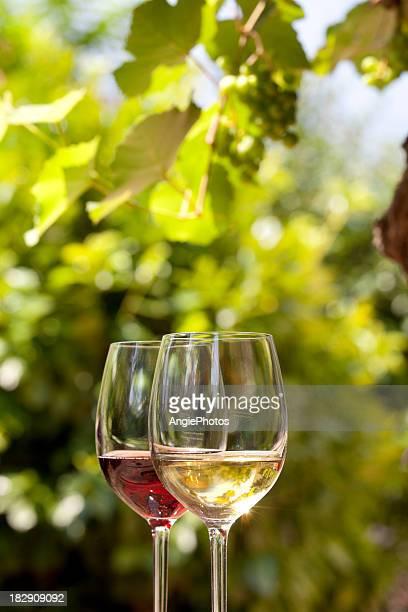 Rouge et vin blanc