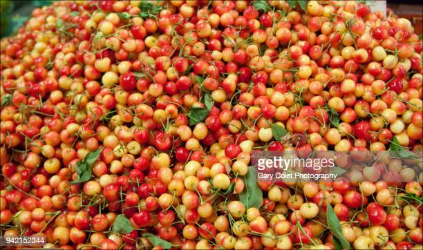 red and yellow cherries in a huge pile on a market stall - gary colet stock pictures, royalty-free photos & images